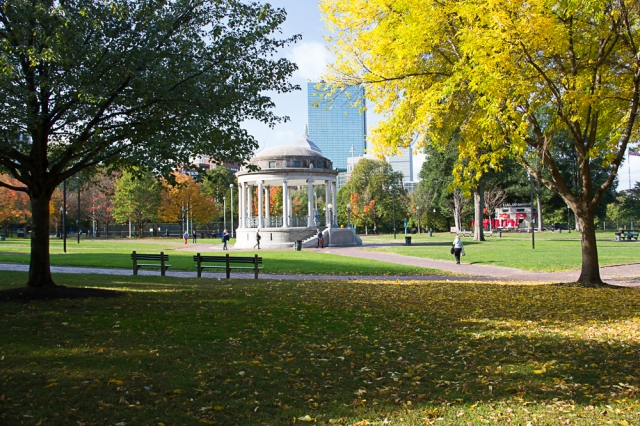 Boston Common (Photo: Caroline Phillips-Licari