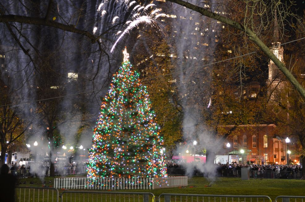 BOSTON'S CHRISTMAS TREE ARRIVES NOVEMBER 18 – Friends of the ...